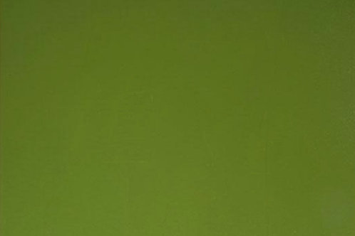 Olive Green 300 x 250mm