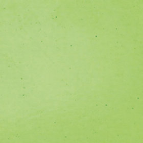 Wissmach Pale Green Hammered 270 x 270mm