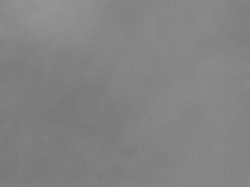 Grey Green 300 x 250m