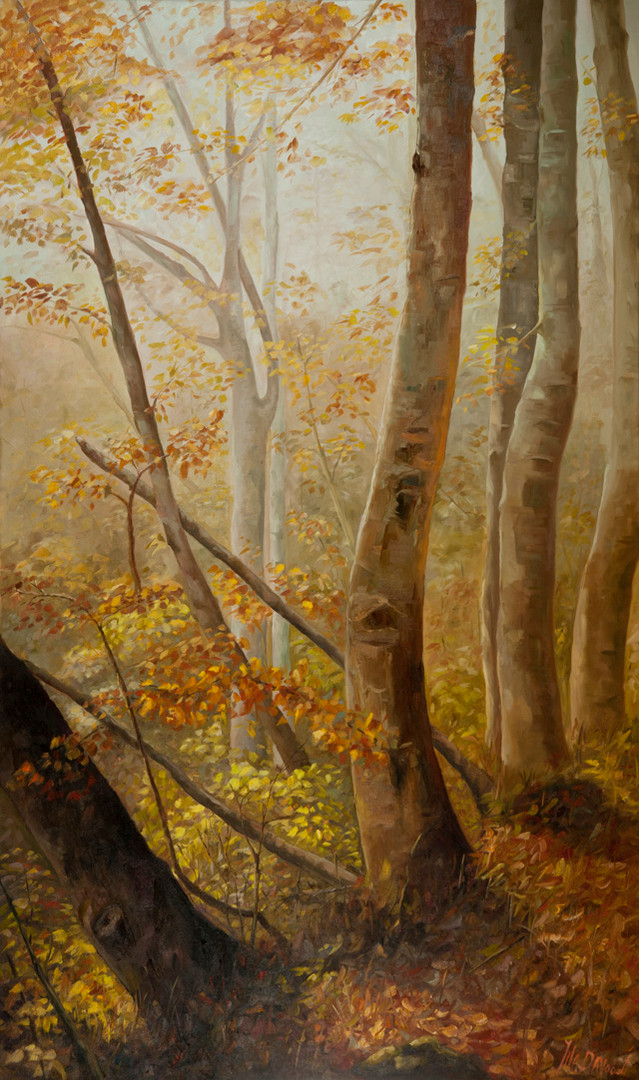 Autumn-Woods-60x36_DSC5555-sml.jpg