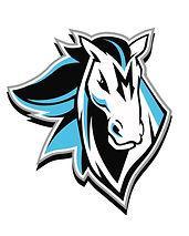 RA 2020 Mustang Logo (1).JPG