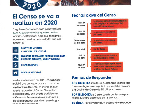 Census 2020 (Spanish)