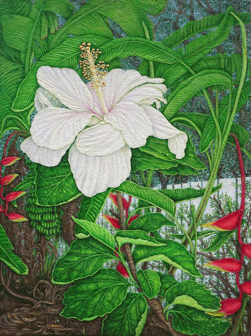 White-Flower.png