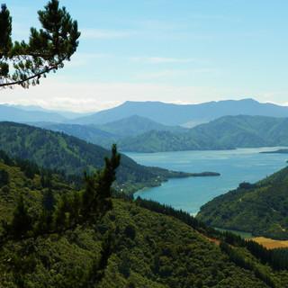 Exploring The Marlborough Sounds, New Zealand