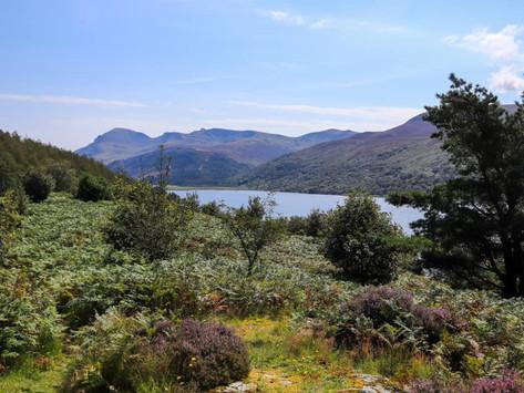 The Lake District Series - Ennerdale Water