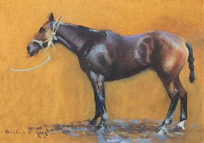 William Rees Art Equine