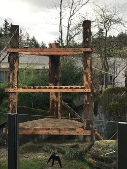OR Zoo Chimp Tower