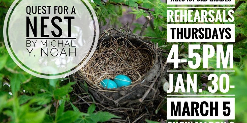 Quest for a Nest: The Magical Power of Persistance