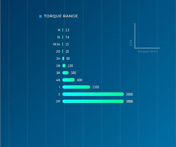 Torque range RAN series.JPG