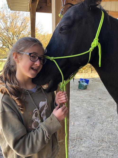 $225 Half Horse Sponsorship