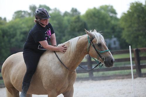 Full Monthly Horse Sponsorship