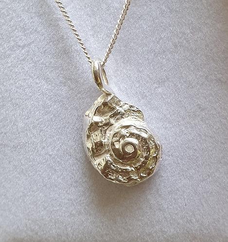 Silver ammonite