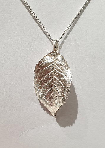 Silver leaf pointed
