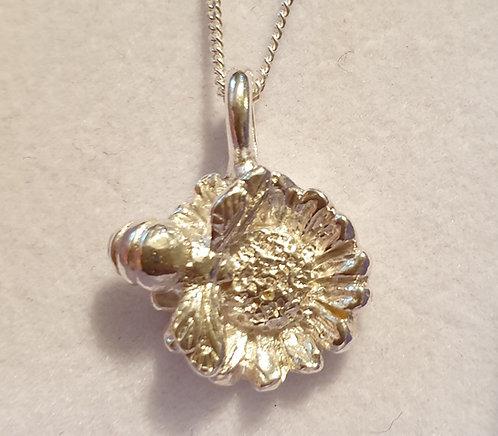 Silver bee on mini sunflower 2