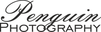 PenguinPhotography Logo 1.png