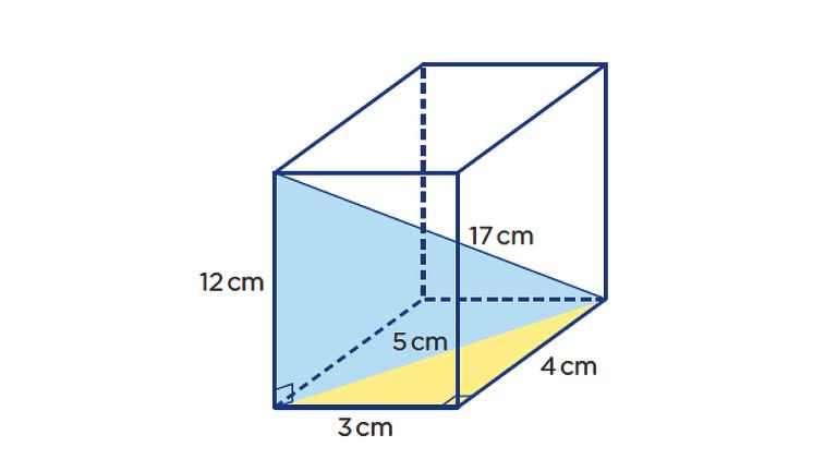 Online Geometry Winter 2022 Session: Measurement