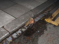 Discarded Shoe:Fatal Blast-Bomb Attack