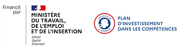 Logo Financé par MTEI   PIC horizontal.p