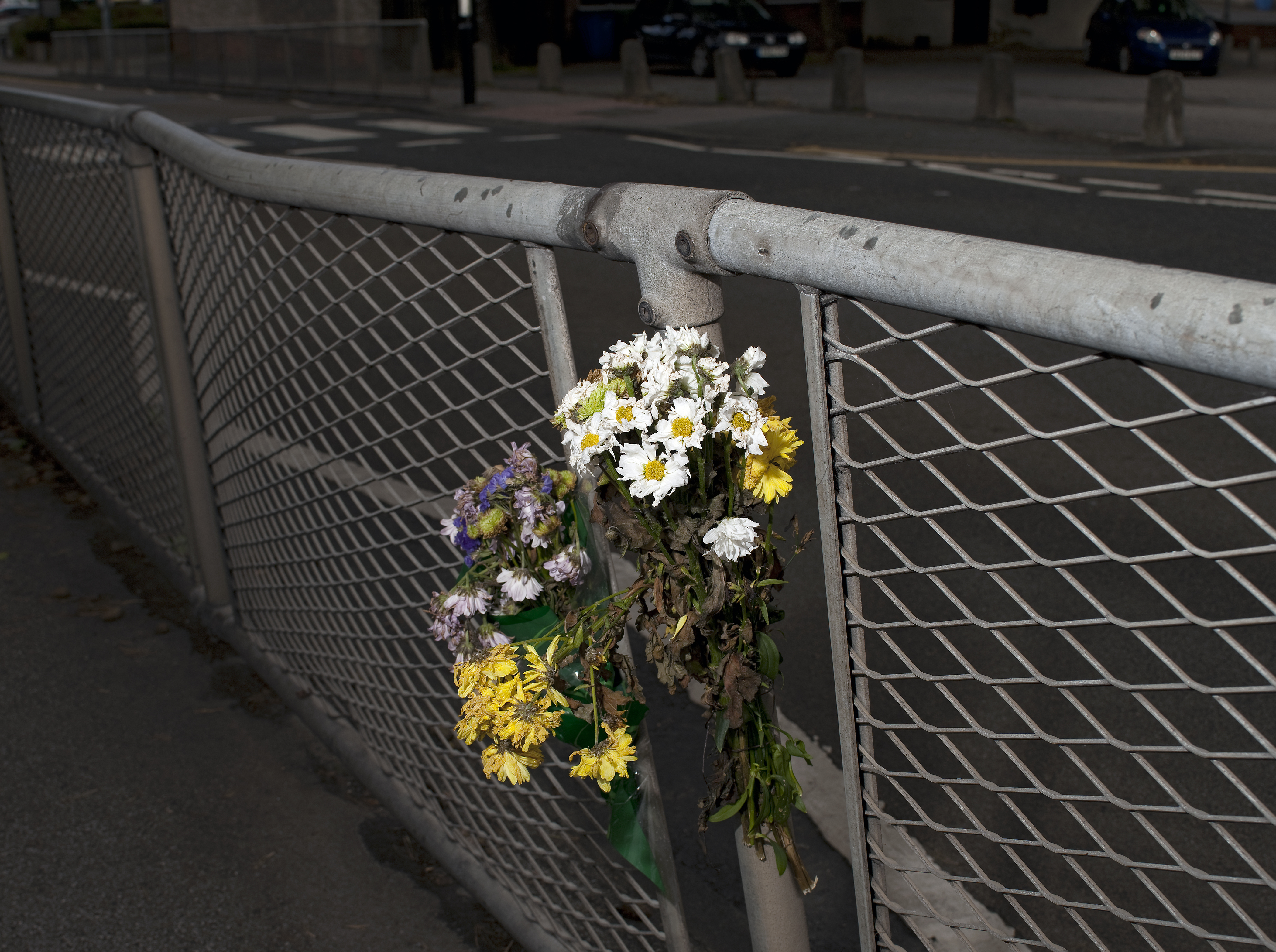 Roadside Memorial:Fatal Traffic Accident