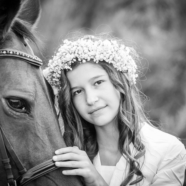 Chevaux - communion - photo
