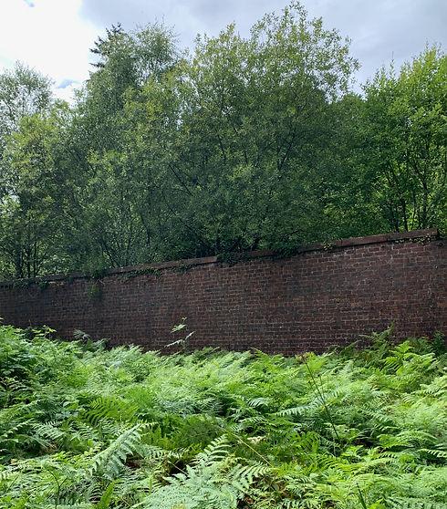 Kilmahew Walled Garden.jpeg