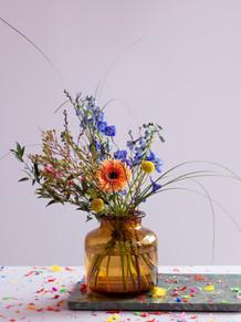 S2, lila, confetti.jpg