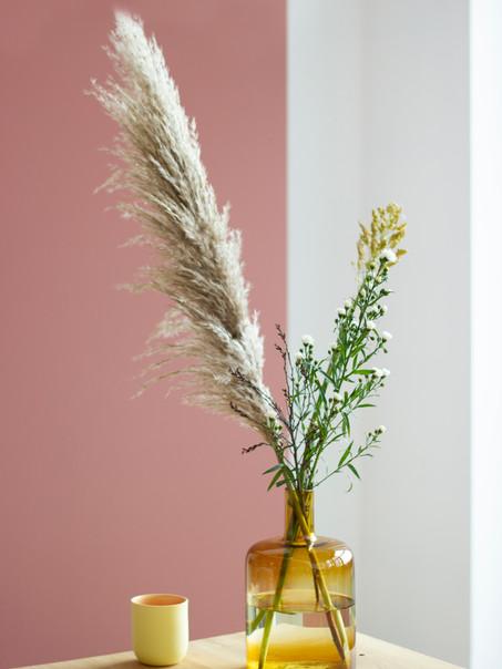 S3, roze, wit geel kopje.jpg