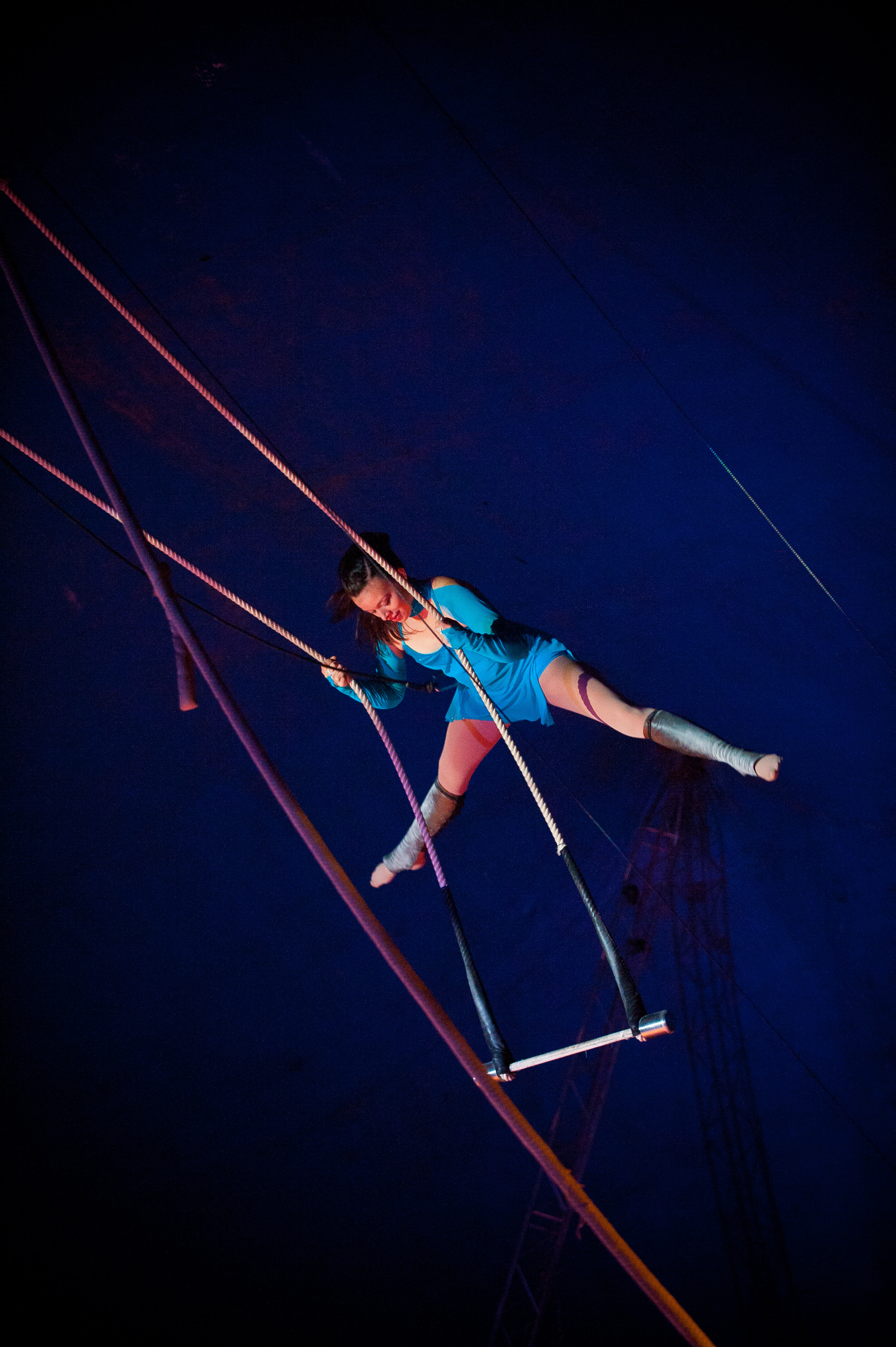 Circus Gerbola