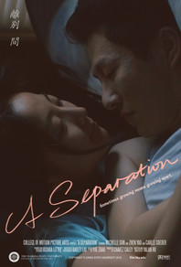 A Separation -poster.jpg