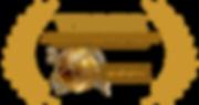 Accolade-REcognition-logo-Gold-1024x543.