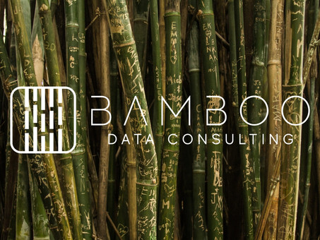 Bamboo Data Consulting joins the Data Collaboration Alliance