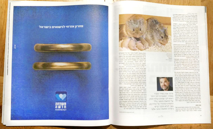 New Family in Ha'aretz newspaper