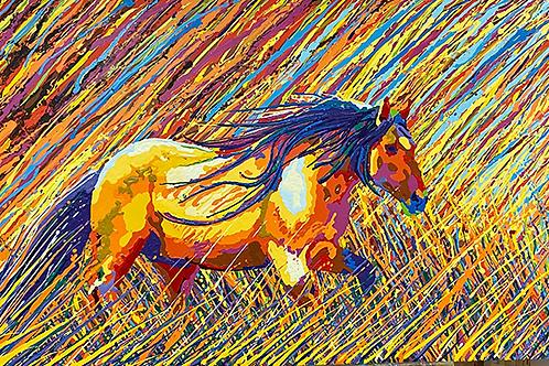 Mustang nel campo di Grano