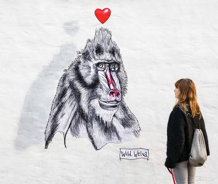 Just Love Reykjavik, Iceland. 2016