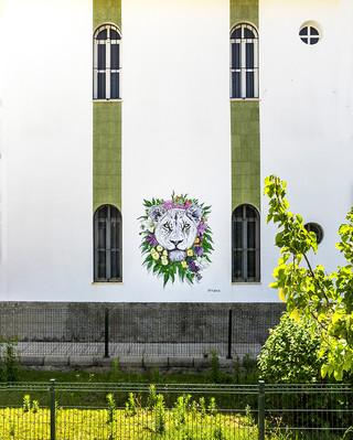 Female Power Blooms Isla Cristina, Spain 2021