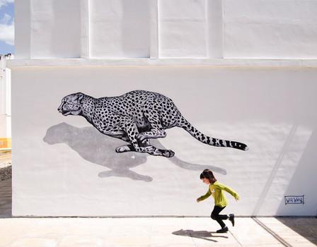 Run, don´t walk University of Huelva, Spain. 2016