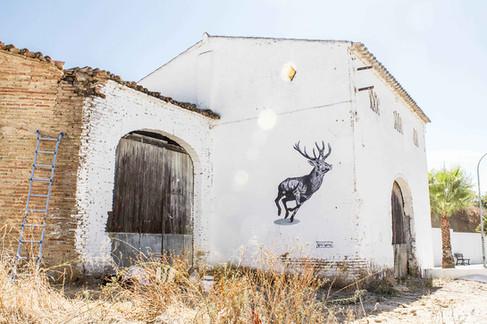 Volver Bonares, Spain. 2016