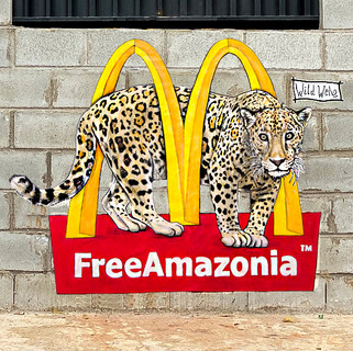 FreeAmazonia Goiânia, Brazil. 2020