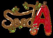 SeedA(シーダ)のロゴ