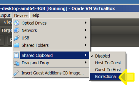 Enable text copy and paste to/from Ubuntu on VirtualBox and Windows 7