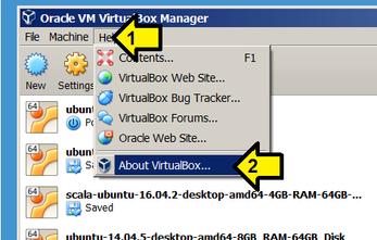 How a VirtualBox Virtual Machine can Access the Internet