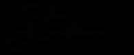 Stana-logo-03.png