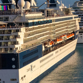 "Stop Calling Cruise Ships ""petri dishes"""