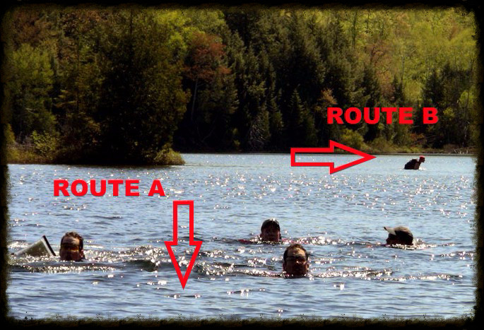 swim_edited.jpg