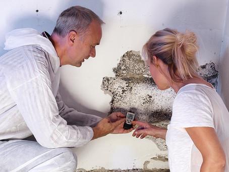 Who do I call for a Mold Damage Claim?