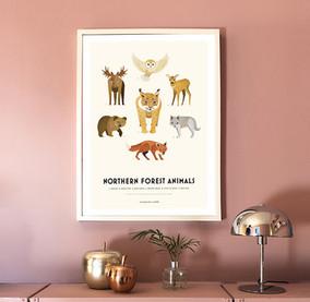 Northern.Animals.Press.web.jpg