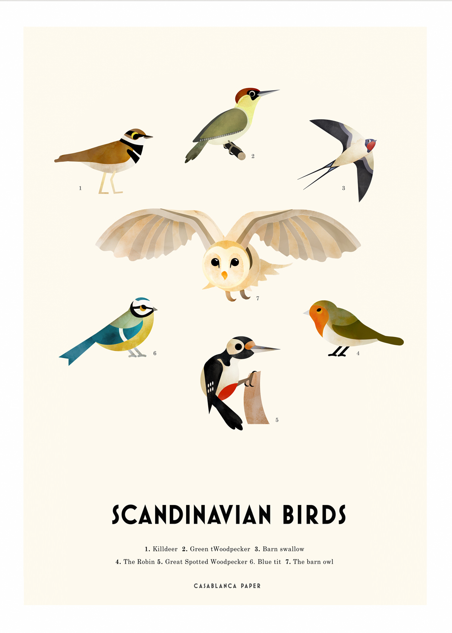 Scandinavian-birds-web