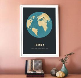 Terra.demo.web2.jpg