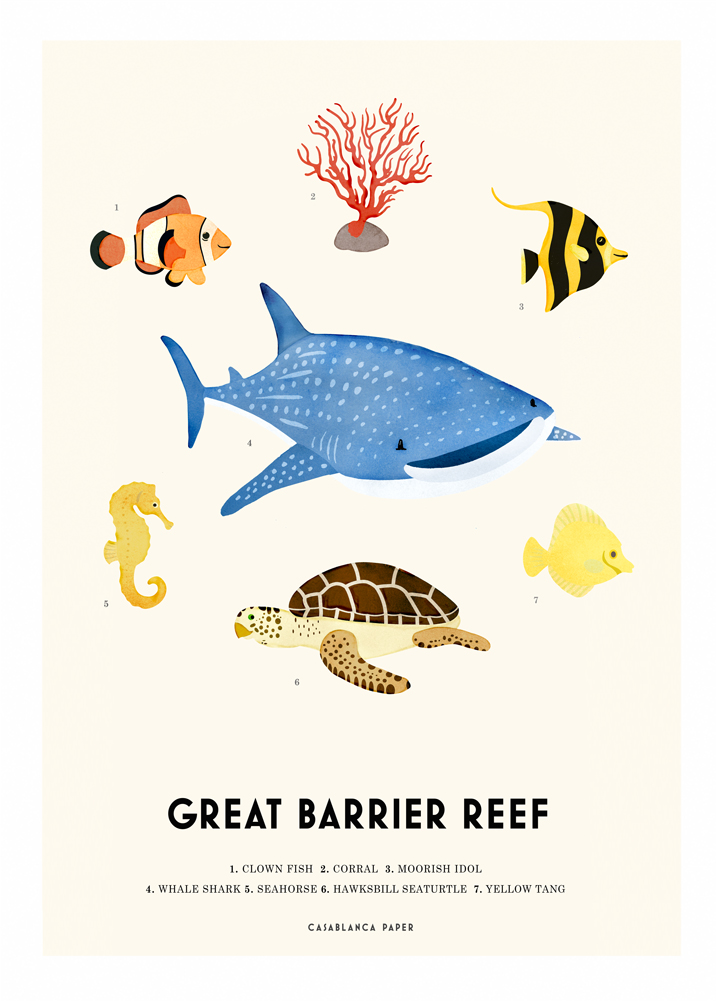 Barrier-reef-web