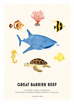 Barrier-reef-web